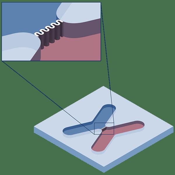 Infographic: microfluidic applications