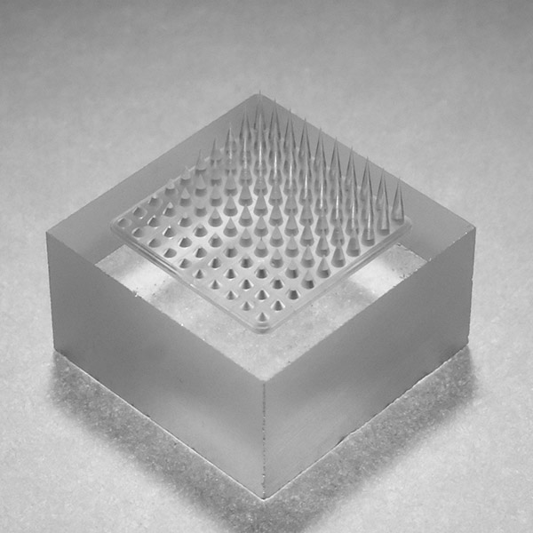 Photo: array of microneadles on a glass substrate