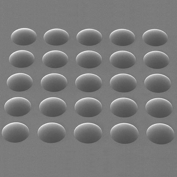 REM photo: array of micro-scale lenses